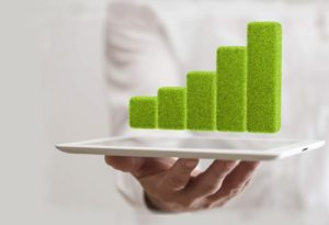 sustainable business growth chart