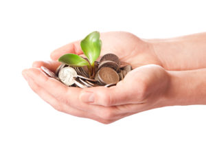 coins and seedling illustrating sustainable investment - triple win advisory