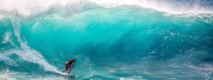 Catch the wave customer enthusiasm for sustainability programs