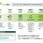 Building a Sustainable Business Case